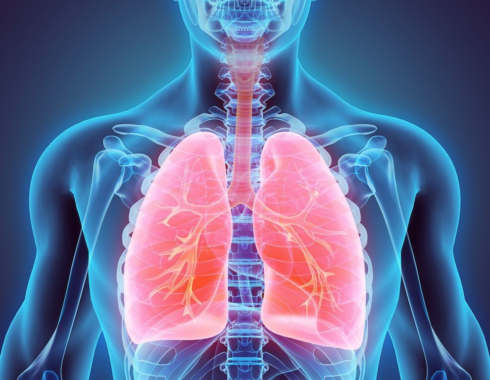 1st year-Respiratory Course