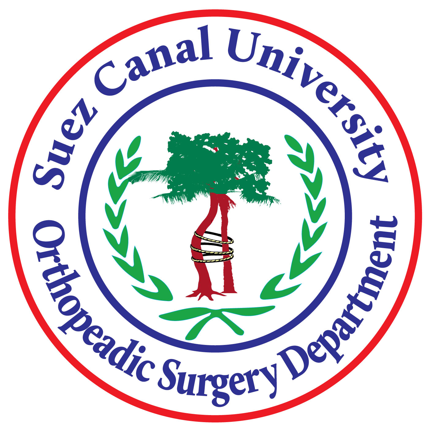 Medical Doctorate Orthopedic surgery and trauma Course (OSOS53)